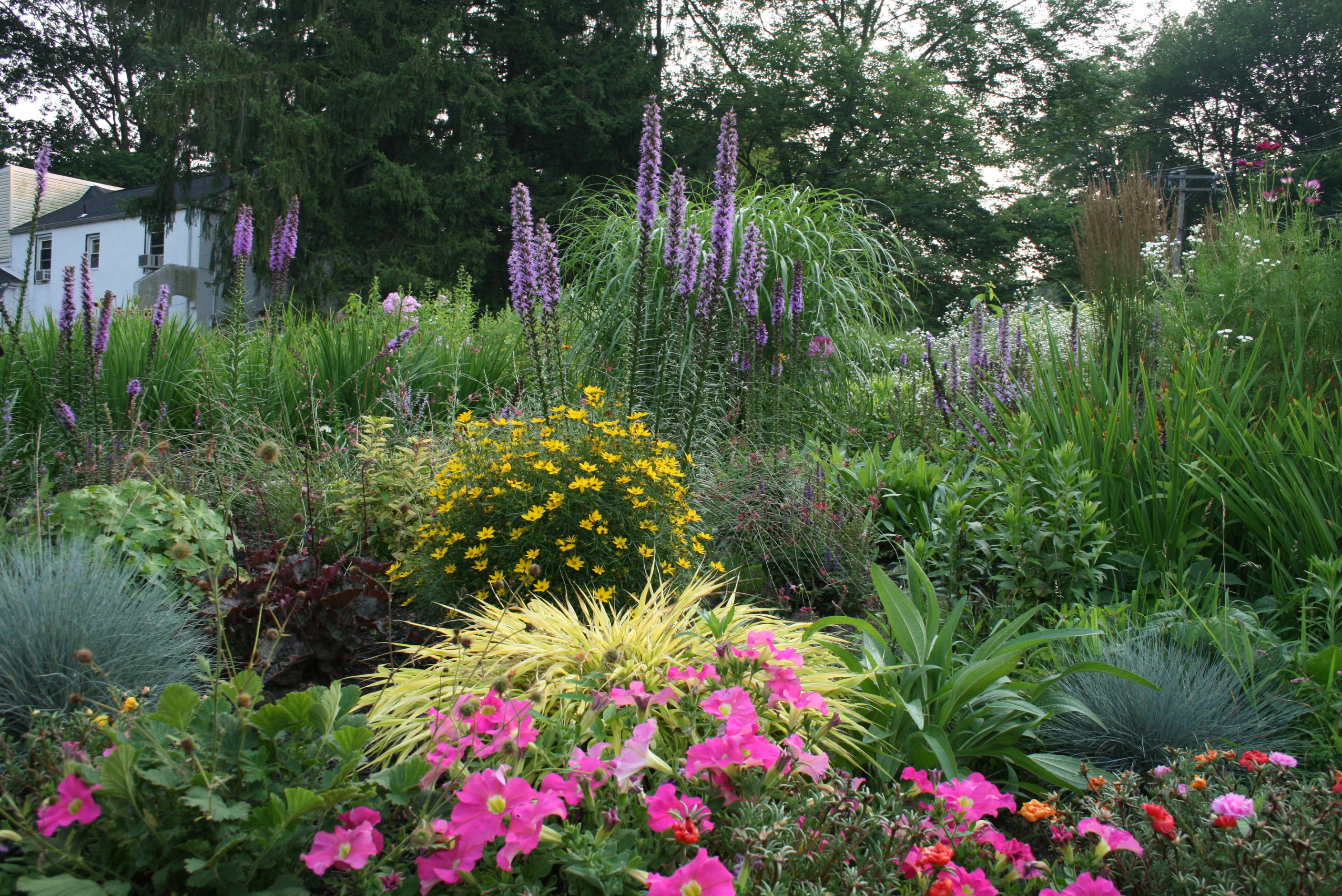 Flowerscapes llc for Perennial garden design